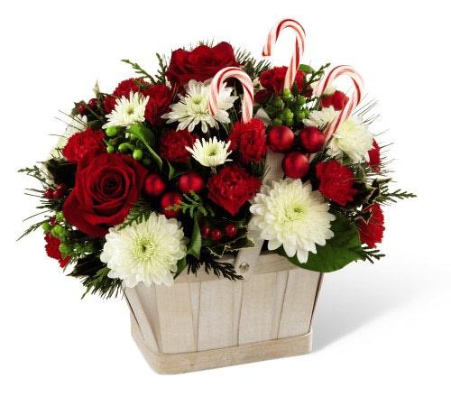 Fruit Flower Baskets Edmonton : Christmas flower basket grower direct